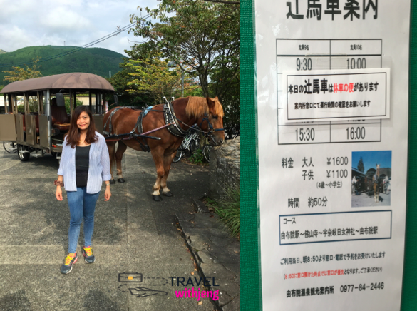 horse carriage in yufuin